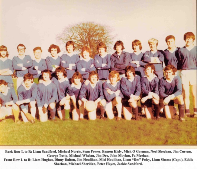 waterford county junior football champions 1973.